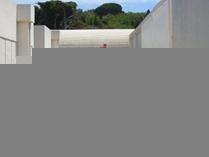 Miro-legs by Julie Sheridan