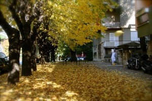 autumn in .... Rome by eddmsa