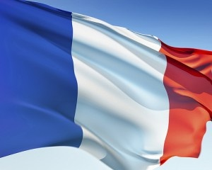french flag by wisegie