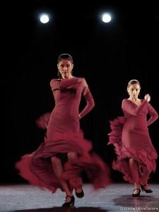 Flamenco show #1 by luciapensache