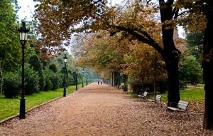 Parc de la Ciutadella by Bracketing Life